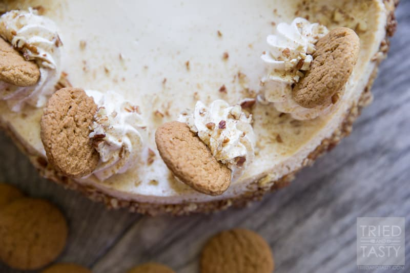 Pumpkin Cheesecake with Gingersnap-Pecan Crust // If you're looking for a light, yet decadent festive desert for the holiday season look no more. This pumpkin cheesecake will quite literally melt in your mouth! Perfectly paired with gingersnaps and pecans it's a dessert you don't want to miss! | Tried and Tasty