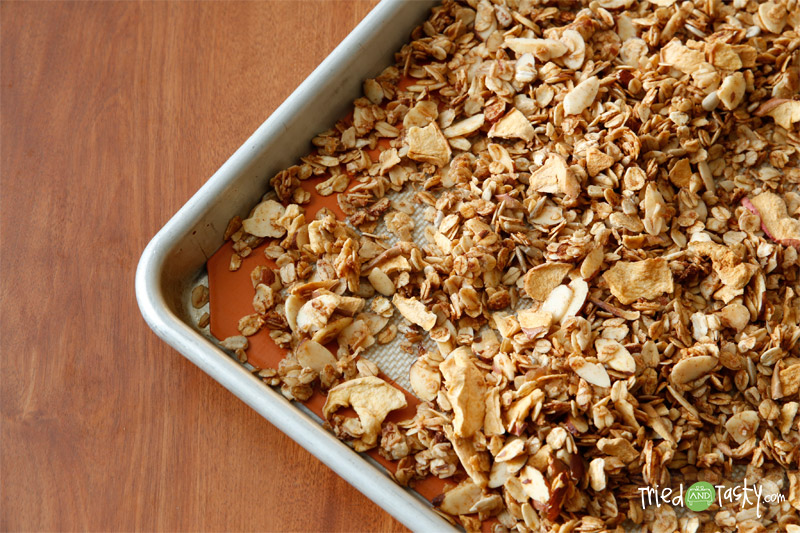 Honey Apple Granola // This sweet and tasty granola is perfect on top of yogurt for breakfast or a snack! | Tried and Tasty