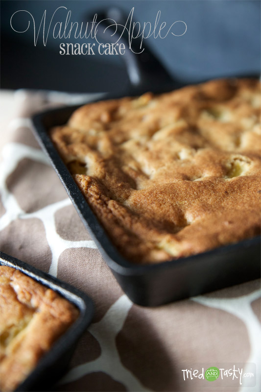Walnut-Apple Snack Cake // These Walnut Apple Snack Cakes are good with or without ice cream.. warm or cold.. they're just all around delicious! |  Tried and Tasty